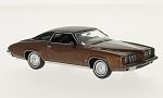 PONTIAC Grand Am  , metallic-brown/matt-black